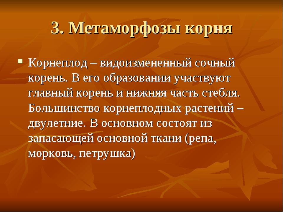 3. Метаморфозы корня Корнеплод – видоизмененный сочный корень. В его образова...