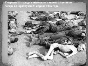Умершие от голода в немецком концентрационном лагере в Нордхаузен 25 апреля 1