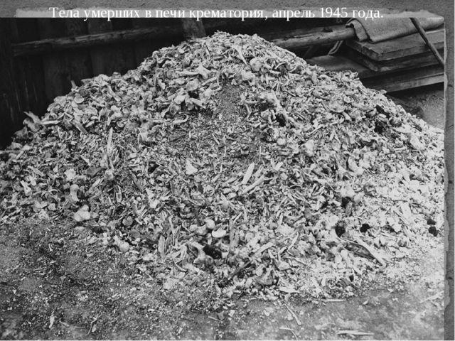 Тела умерших в печи крематория, апрель 1945 года.