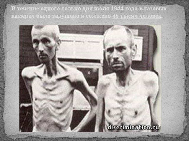 В течение одного только дня июля 1944 года в газовых камерах было задушено и...