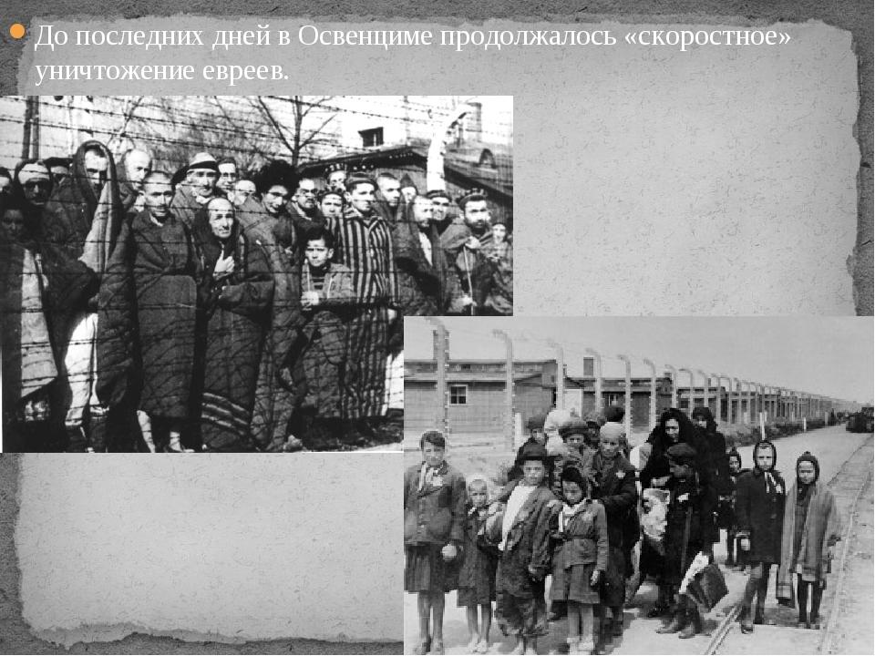 До последних дней в Освенциме продолжалось «скоростное» уничтожение евреев.