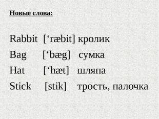 Новые слова: Rabbit ['ræbit] кролик Bag ['bæg] сумка Hat ['hæt] шляпа Stick [