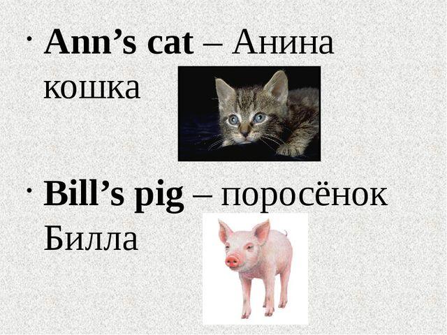 Ann's cat – Анина кошка Bill's pig – поросёнок Билла