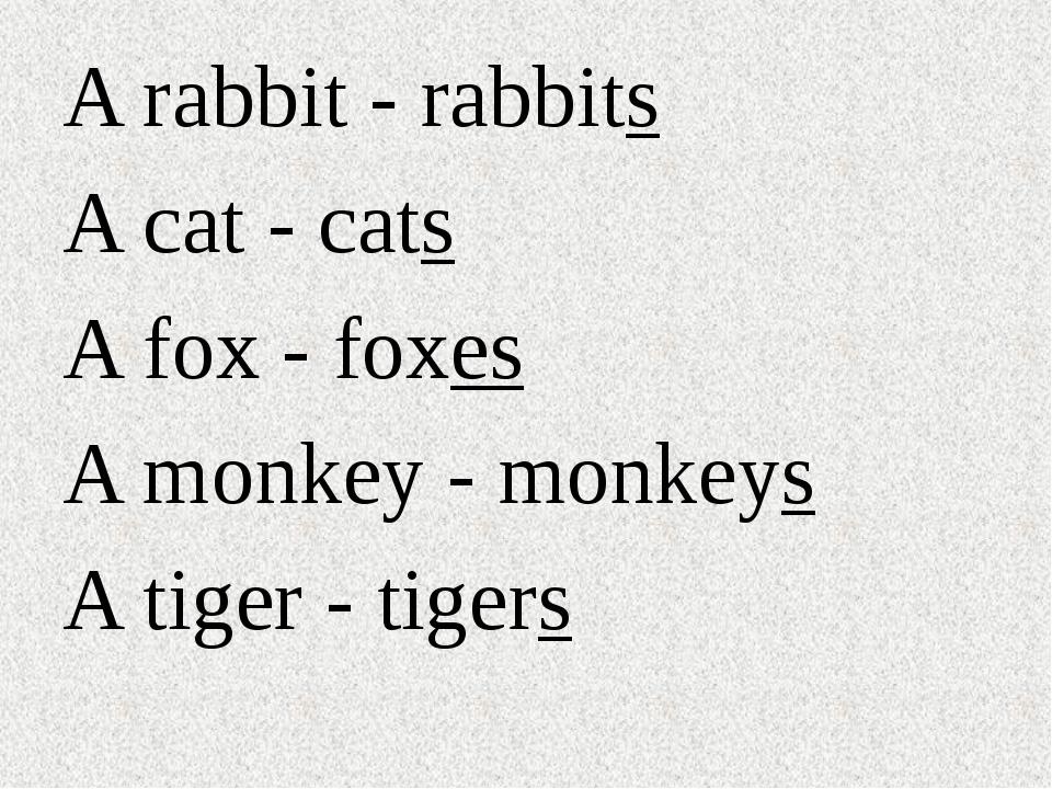 A rabbit - rabbits A cat - cats A fox - foxes A monkey - monkeys A tiger - ti...