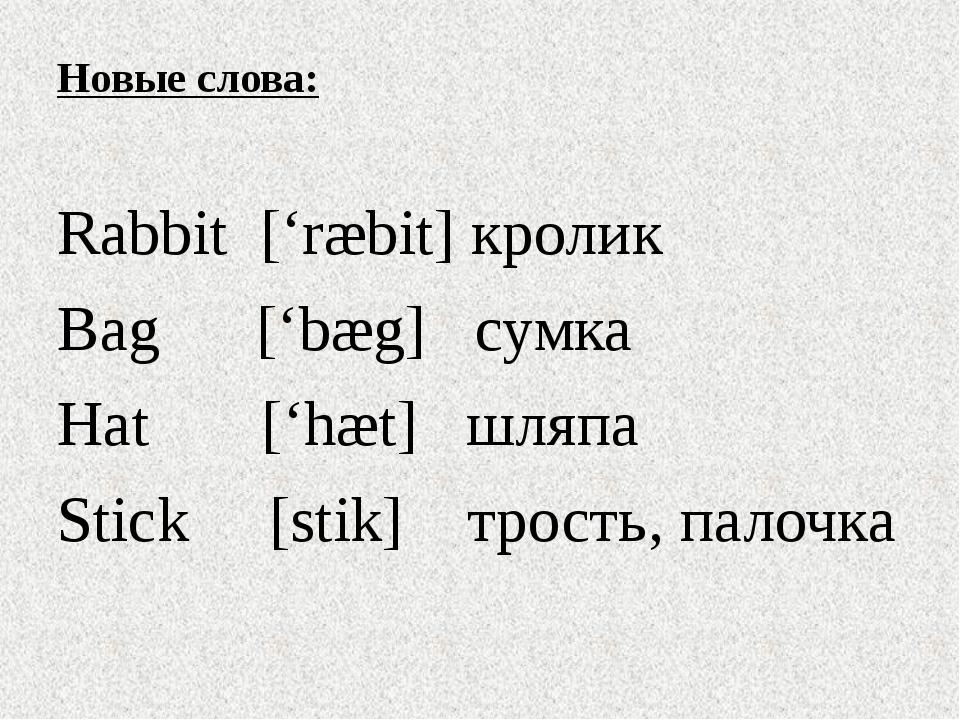 Новые слова: Rabbit ['ræbit] кролик Bag ['bæg] сумка Hat ['hæt] шляпа Stick [...