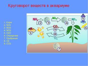 Круговорот веществ в аквариуме 1. Корм 2. NH3 3. NO2 4. NO3 5. H2O 6. Освеще