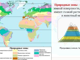 80° Природные зоны – участки земной поверхности, которые имеют схожий растите