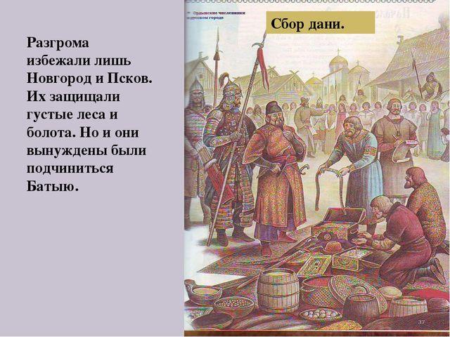 Сбор дани. Разгрома избежали лишь Новгород и Псков. Их защищали густые леса и...