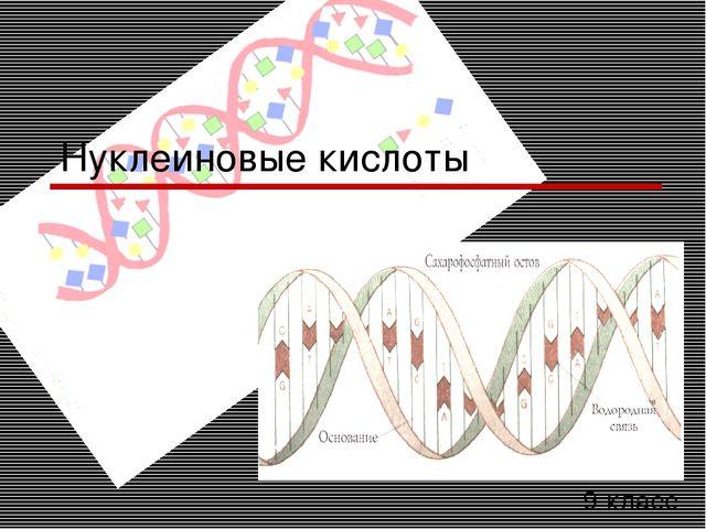 9 класс Нуклеиновые кислоты