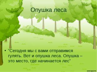 """Опушка леса """"Сегодня мы с вами отправимся гулять. Вот и опушка леса. Опушка –"""