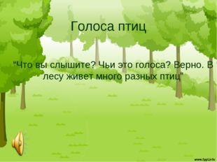 """Голоса птиц """"Что вы слышите? Чьи это голоса? Верно. В лесу живет много разных"""