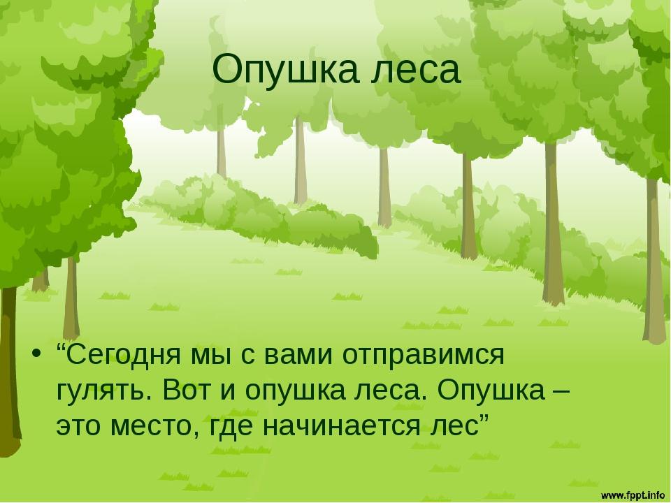 """Опушка леса """"Сегодня мы с вами отправимся гулять. Вот и опушка леса. Опушка –..."""