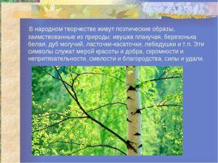 В народном творчестве живут поэтические образы, заимствованные из природы: и