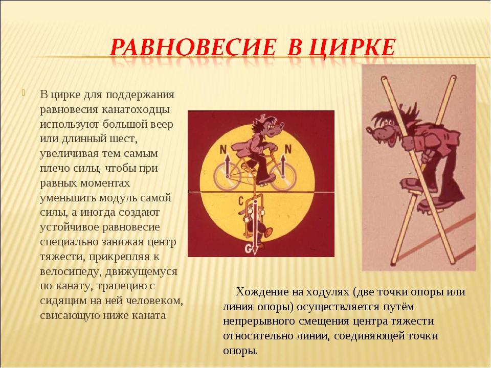 В цирке для поддержания равновесия канатоходцы используют большой веер или дл...
