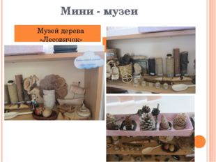 Мини - музеи Музей дерева «Лесовичок»