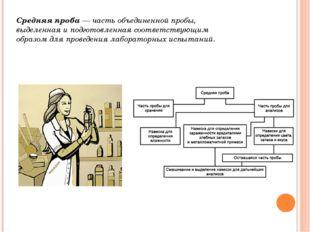 Средняя проба — часть объединенной пробы, выделенная и подготовленная соответ