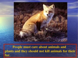 People must care about animals and plants and they should not kill animals f
