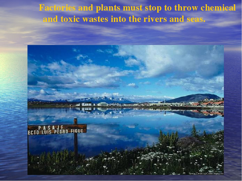 Factories and plants must stop to throw chemical and toxic wastes into the r...