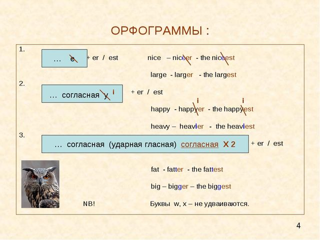 ОРФОГРАММЫ : 1. + er / est nice – niceer - the niceest 				 				 large - larg...