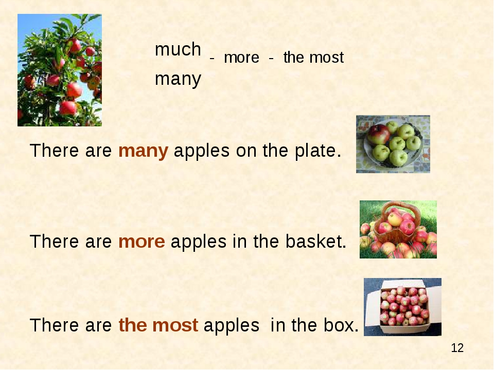 much - more - the most many There are many apples on the plate. There are mor...