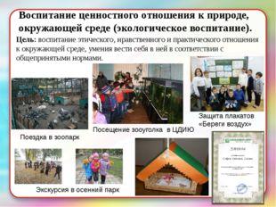 Воспитание ценностного отношения к природе, окружающей среде (экологическое в