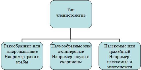 hello_html_m7ea47964.jpg