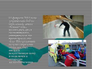 14 февраля 2014 года технический боб на бобслейной трассе «Санки» сбил волон