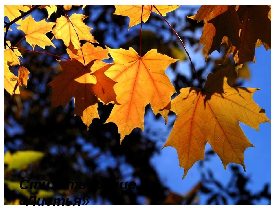 Стихотворение «Листья»