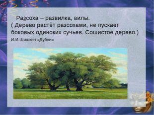Разсоха – развилка, вилы. ( Дерево растёт разсохами, не пускает боковых один