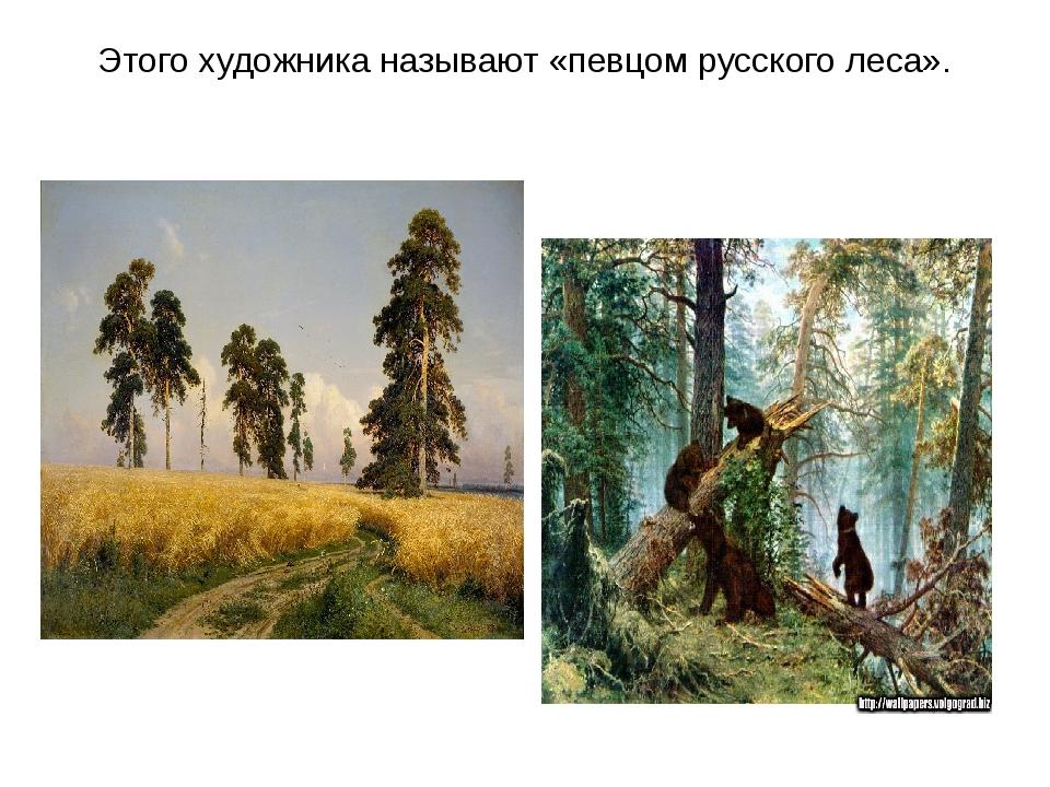 Этого художника называют «певцом русского леса».