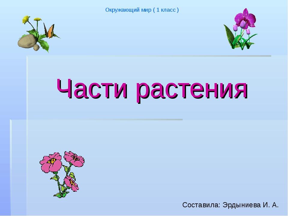 Части растения Окружающий мир ( 1 класс ) Cоставила: Эрдыниева И. А.