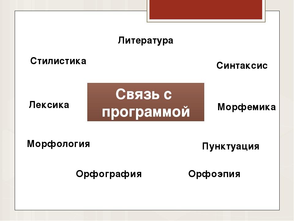 Связь с программой Литература Стилистика Лексика Морфология Орфография Орфоэп...