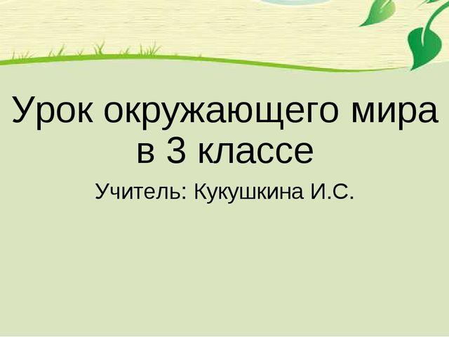Урок окружающего мира в 3 классе Учитель: Кукушкина И.С.