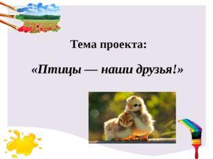 «Птицы — наши друзья!» Тема проекта:
