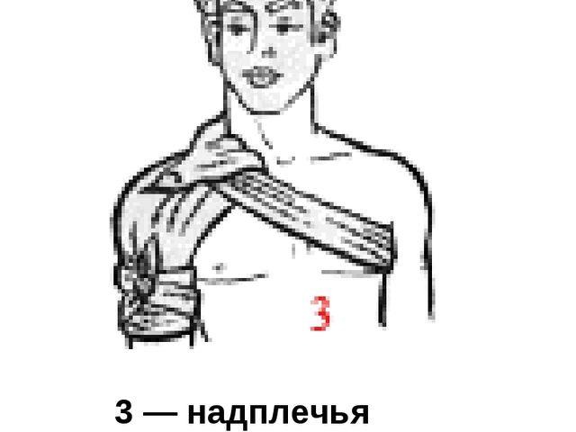 3 — надплечья (двумя косынками)