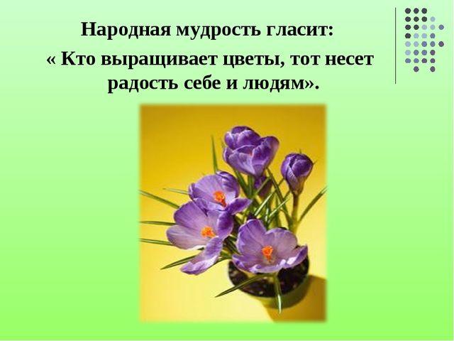 Народная мудрость гласит: « Кто выращивает цветы, тот несет радость себе и лю...
