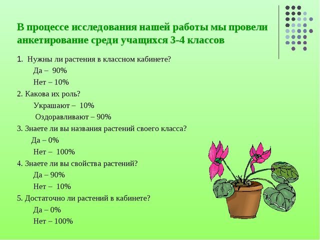 В процессе исследования нашей работы мы провели анкетирование среди учащихся...