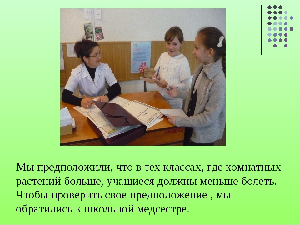 Мы предположили, что в тех классах, где комнатных растений больше, учащиеся д...