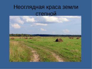 Неоглядная краса земли степной