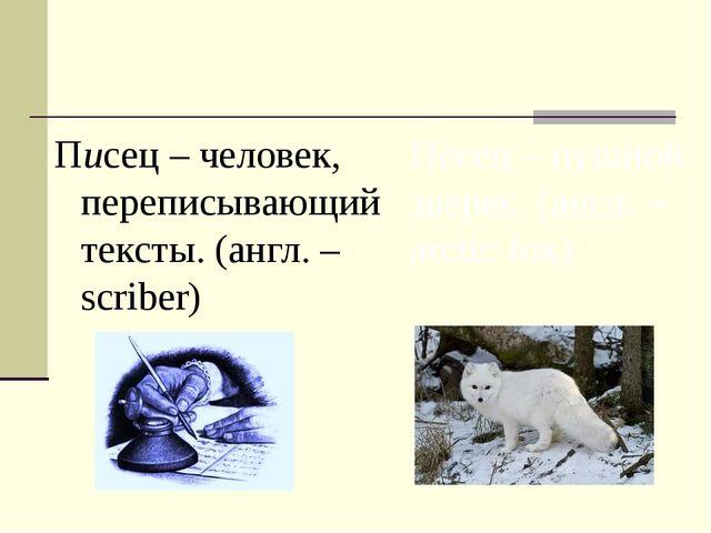 Писец – человек, переписывающий тексты. (англ. – scriber) Песец – пушной звер...
