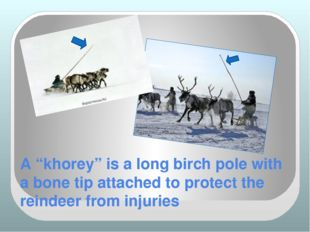 "A ""khorey"" is a long birch pole with a bone tip attached to protect the reind"