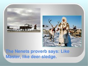 The Nenets proverb says: Like Master, like deer-sledge.