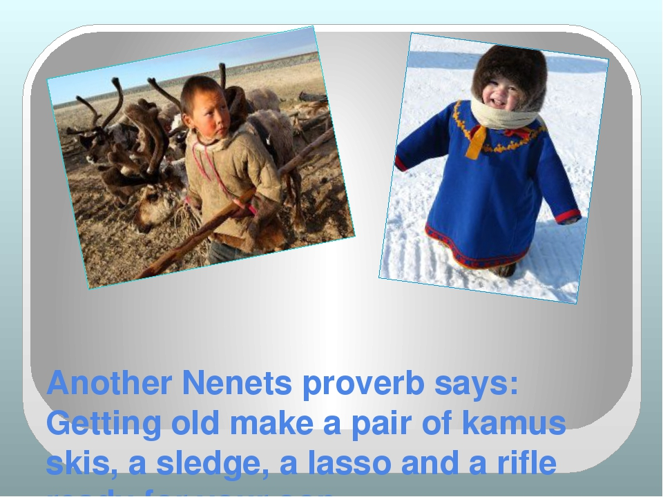 Another Nenets proverb says: Getting old make a pair of kamus skis, a sledge,...
