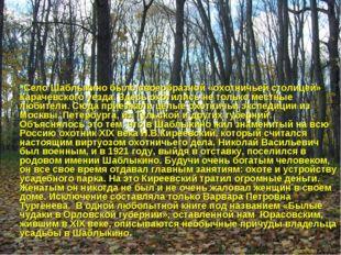 Село Шаблыкино было своеобразной «охотничьей столицей» Карачевского уезда. Зд
