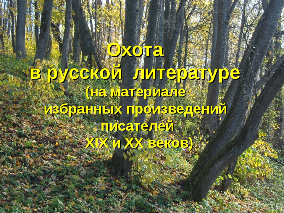 Охота в русской литературе (на материале избранных произведений писателей ХIХ...