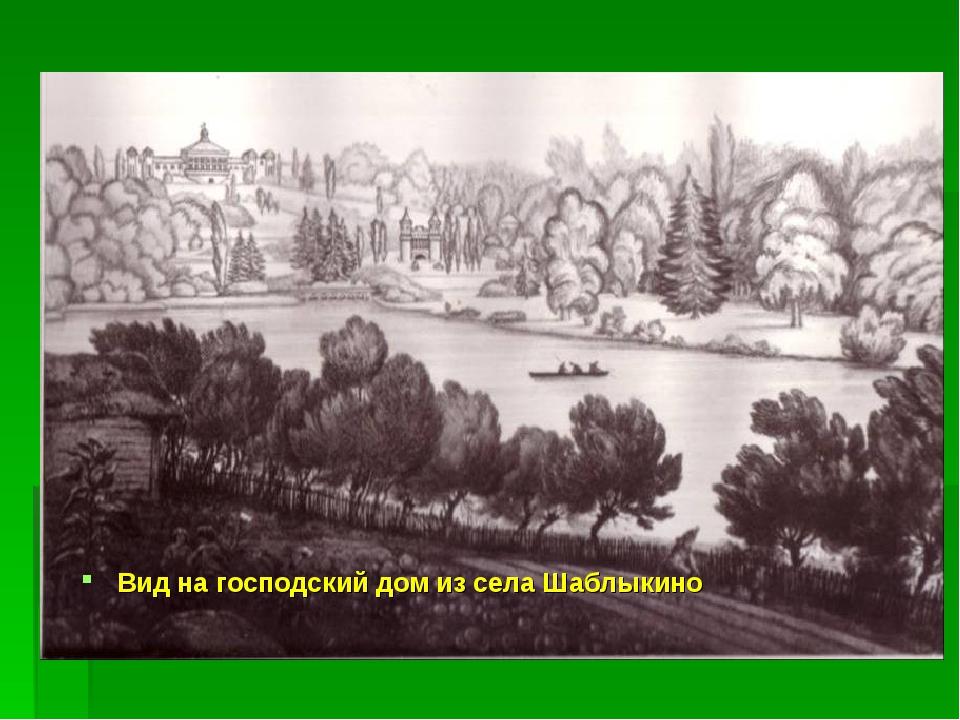 Вид на господский дом из села Шаблыкино