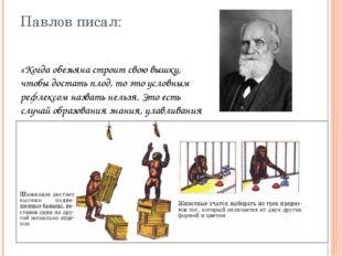 Павлов писал: «Когда обезьяна строит свою вышку, чтобы достать плод, то это у