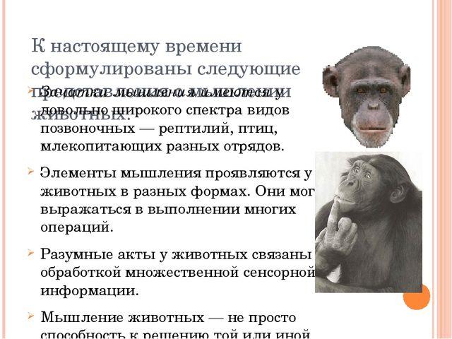 К настоящему времени сформулированы следующие представления о мышлении животн...