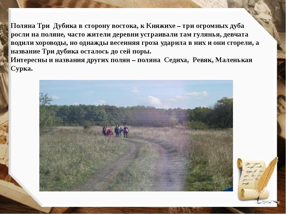 Поляна Три Дубика в сторону востока, к Княжихе – три огромных дуба росли на п...