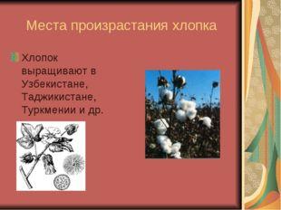 Места произрастания хлопка Хлопок выращивают в Узбекистане, Таджикистане, Тур